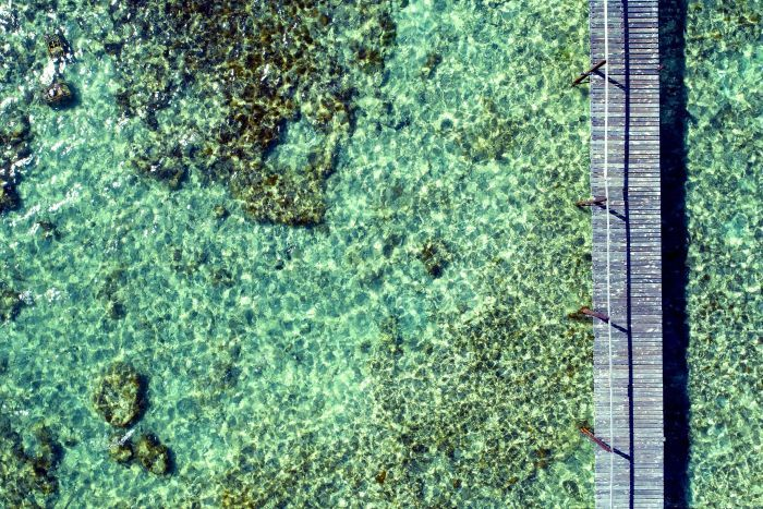 The crystal clear waters of the Abrolhos