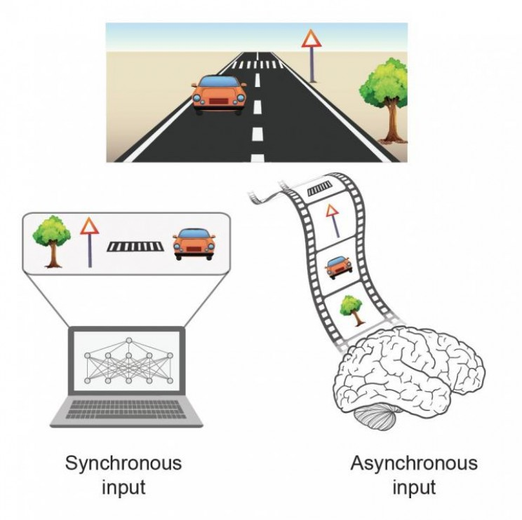 A-New-Type-of-AI-Has-Been-Created-Inspired-by-the-Human-Brain