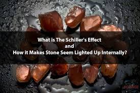 What is The Schiller's Effect